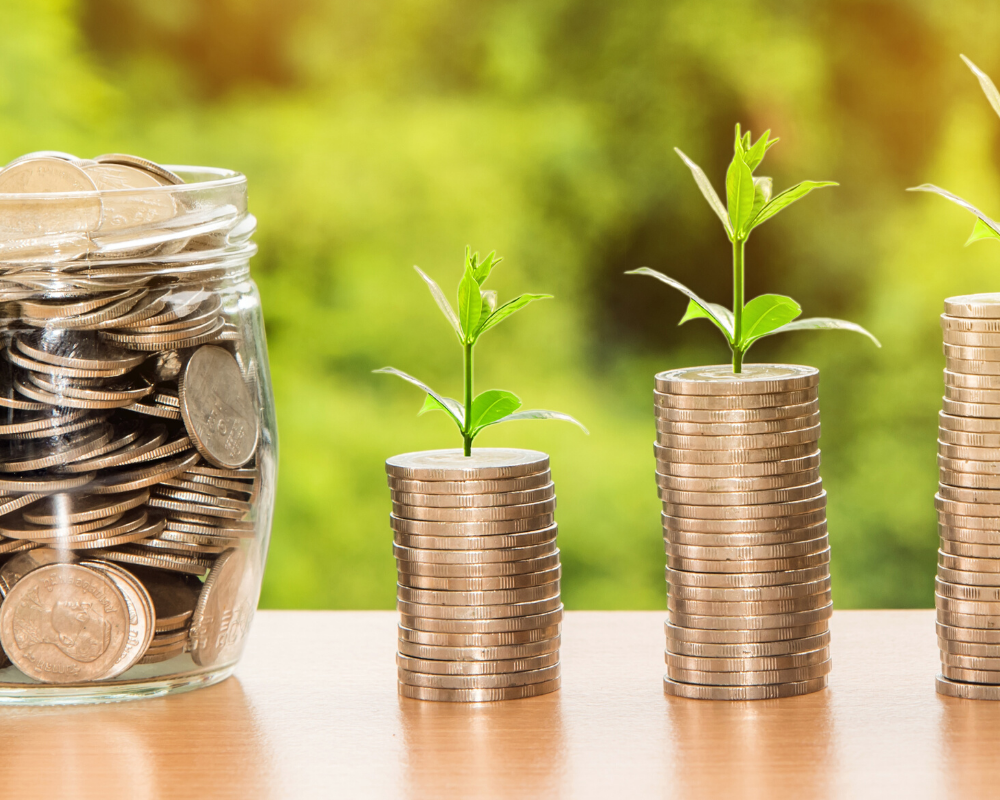 अपनी आय में विविधता लाएं (Diversify Your Income)