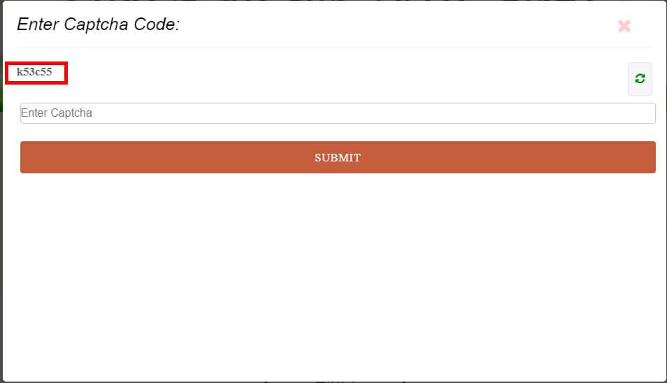 2. कैप्चा कोड को दर्ज करना